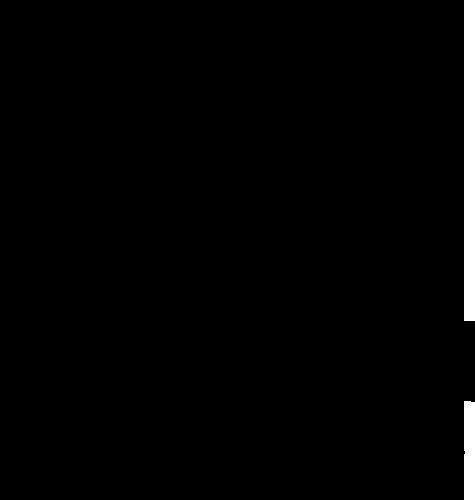 Party Photobooth logo